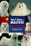 guide to owning a maltese james 1996