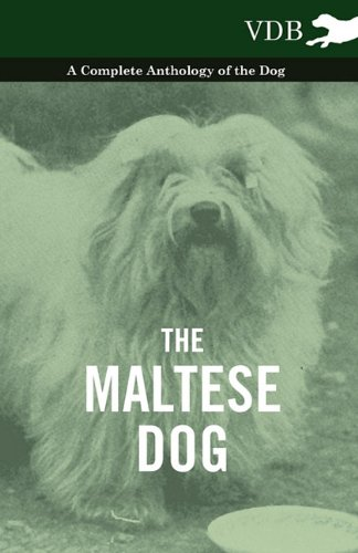 the maltese dog complete anthology various authors 2010
