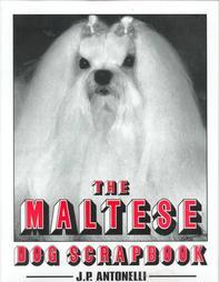 the maltese dog scrapbook antonelli 1999