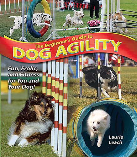 the beginners guide to dog agility leach 2006