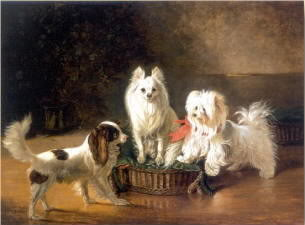 Johann Wegener Toy spaniel a pomeranian and a maltese by a basket 1855